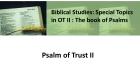 Psalm of Trust II